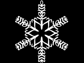 Liam snowflake ornament in White Natural Versatile Plastic