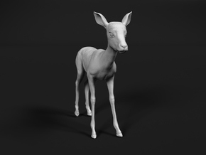 Impala 1:9 Standing Fawn in White Natural Versatile Plastic