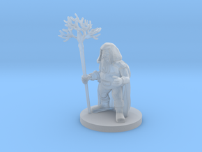 Dwarf Druid in Smooth Fine Detail Plastic