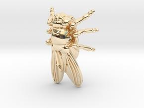 Drosophila Fruit Fly Pendant - Science Jewelry in 14k Gold Plated Brass