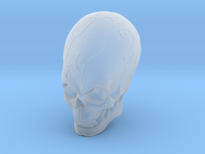 Elebrian skull  in Smoothest Fine Detail Plastic