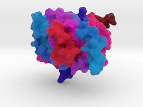 Single-Strand DNA-Binding Protein (SSB) in Full Color Sandstone