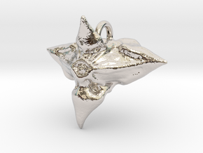 Caltrop Seed Pendant in Rhodium Plated Brass