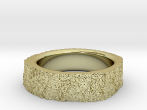 Tree Ring in 18k Gold Plated Brass: 5 / 49