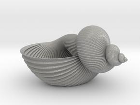 Shell Flower Pot in Aluminum
