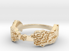 I Saw It First (Ring Size 8) in 14k Gold Plated Brass