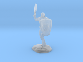 Barbarian with Sword and Bear Shield in Smooth Fine Detail Plastic