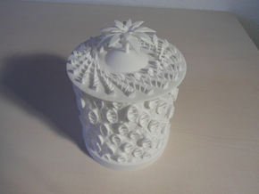 Ocean Bloom Zoetrope (old version) in White Processed Versatile Plastic