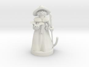 Kitten Wizard in White Premium Versatile Plastic