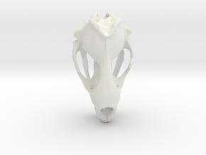 Leopard Seal Skull  (110mm) in White Natural Versatile Plastic