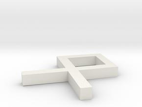 Rune_Othila in White Natural Versatile Plastic