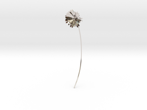 Daisy earring in Platinum