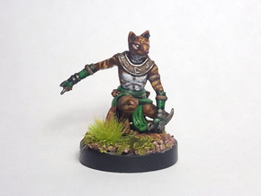 Tabaxi Rogue (Male) in Smooth Fine Detail Plastic