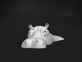 Hippopotamus 1:35 Lying in Water 1 in White Natural Versatile Plastic