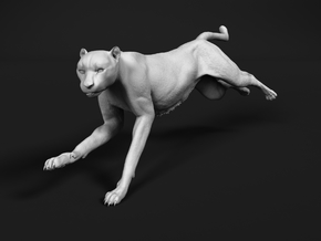 Cheetah 1:18 Running Female in White Natural Versatile Plastic