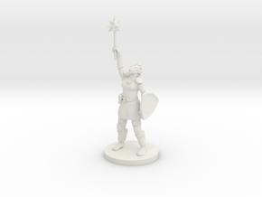 Female Dragonborn Paladin / Cleric in White Natural Versatile Plastic