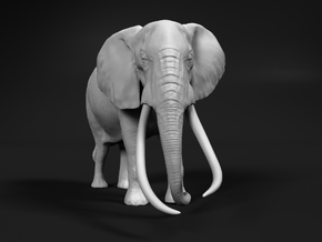 African Bush Elephant 1:96 Tusker Bull Satao in Smooth Fine Detail Plastic