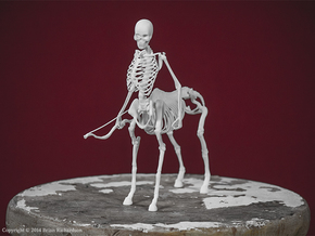 Centaur Skeleton in White Natural Versatile Plastic