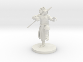 Gold Dragonborn male Monk in White Natural Versatile Plastic