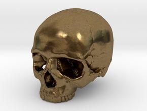 SKULL 23mm / 0.9in in Natural Bronze