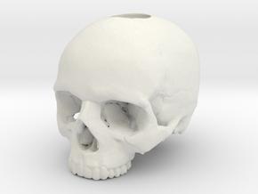 Skull in White Premium Versatile Plastic