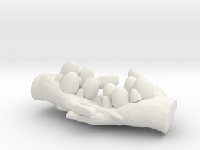 egg box(hand) in White Natural Versatile Plastic