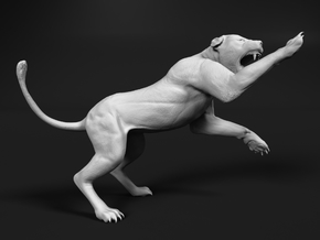 Lion 1:45 Striking Lioness in White Natural Versatile Plastic