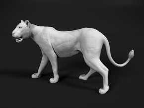 Lion 1:16 Walking Lioness 1 in White Natural Versatile Plastic
