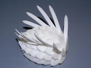 Wiwaxia v4 in White Processed Versatile Plastic