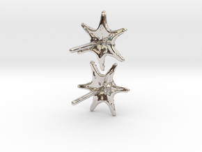 Sea Star Earrings in Rhodium Plated Brass