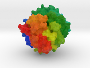 Proteinase K in Full Color Sandstone