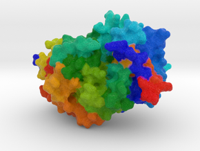 Human Heparanase in Full Color Sandstone