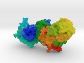Glutaminyl-tRNA Synthetase in Full Color Sandstone