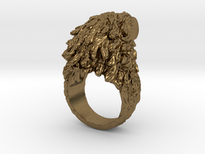 Eagle Ring in Natural Bronze: 5 / 49