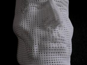 man mesh in White Natural Versatile Plastic