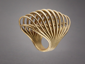 Ring 001 in Raw Bronze
