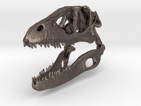 Dino Skull - Raptor Replica in Polished Bronzed Silver Steel