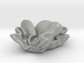 Rose petal bubble snail ( Hydatina physis ) in Aluminum: Small