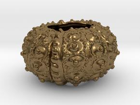 Sea Urchin 11 in Natural Bronze