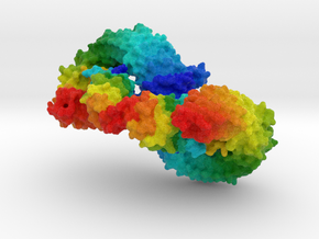 Plant Peptide Hormone Receptor Complex in Full Color Sandstone