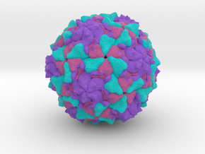 Polio Virus in Full Color Sandstone