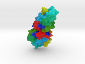 Polynucleotide Kinase in Full Color Sandstone