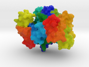 Gluconokinase in Full Color Sandstone