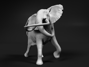 African Bush Elephant 1:76 Tusker Bull Shawu in Smooth Fine Detail Plastic