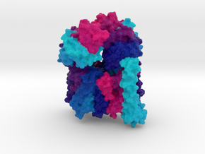 Bacterial Vitamin B12 Transporter in Full Color Sandstone