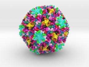 Infectious Bursal Disease Virus (Large) in Glossy Full Color Sandstone