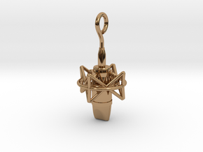 Pro Studio Microphone Pendant in Polished Brass