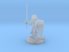 Lionfolk Paladin in Smooth Fine Detail Plastic