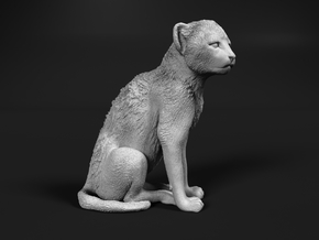 Cheetah 1:64 Sitting Cub in Smooth Fine Detail Plastic