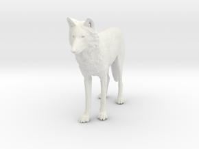 North American Gray Wolf - Small in White Premium Versatile Plastic